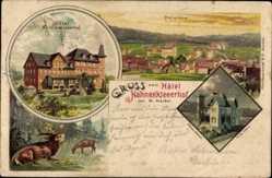 Litho Hahnenklee Bockswiese Goslar, Hotel Hahnenkleerhof, Hirsche, Villa Clara
