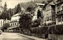 Postcard Friedrichroda im Thüringer Wald, Blick in die Waldstraße