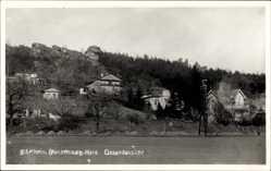 Foto Ak Blankenburg am Harz, Hausansichten, Bibelheim, Felsen
