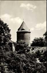 Postcard Plau in Mecklenburg, Blick zum Amtsberg, Turm, Vegetation