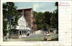 Ak Mägdesprung Harzgerode im Harz, Das Hotel Mägdesprung von außen