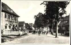 Ak Schierke Wernigerode, Straßenpartie, Rinderherde, Cafe Winkler