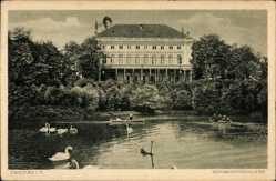 Postcard Zwickau Sachsen, Blick auf das Schwanenschloss, Schwäne