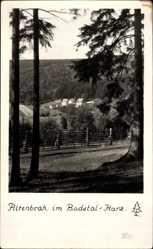 Foto Ak Altenbrak Thale im Harz, Blick aus der Ferne auf die Ortschaft