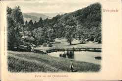 Ak Wernigerode am Harz, Partie aus dem Christianental, Gewässer