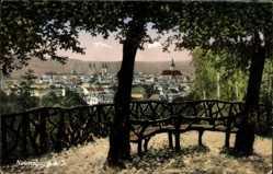 Ak Naumburg an der Saale, Panoramablick auf die Stadt