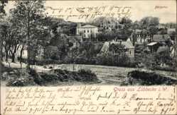 Postcard Lübbecke in Ostwestfalen, Villen vom Bergertor