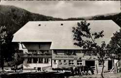 Postcard Feldberg im Schwarzwald Baden Württemberg, Gasthaus zum Feldsee, O. Andris