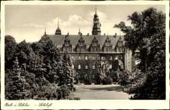 Ak Oleśnica Oels Schlesien, Blick auf das Schloss, Parkanlage, Rankenbewuchs