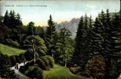 Postcard Döbeln in Mittelsachsen, Partie a.d. Zweiniger Grund