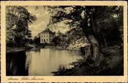 Postcard Dessau in Sachsen Anhalt, Gewässerpartie mit Blick auf das Schloss Luisium