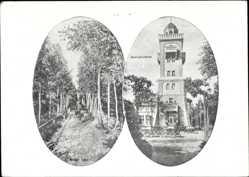 Postcard Bad Schmiedeberg in der Dübener Heide, Aussichtsturm, Hotel, Paul Rielstein