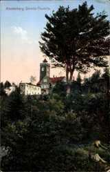 Postcard Demitz Thumitz, Blick auf den Klosterberg, Waldpartie