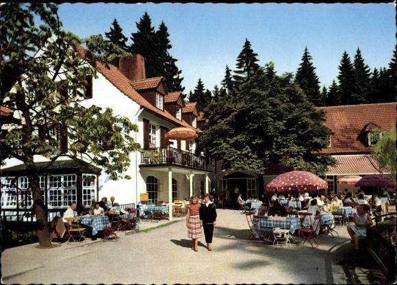 ansichtskarte postkarte leopoldstal horn bad meinberg im kreis lippe waldhotel und pension. Black Bedroom Furniture Sets. Home Design Ideas