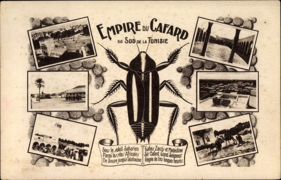 Postcard Tunesien Empire Du Cafard Kuchenschabe Akpool Co Uk