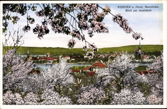 Postcard Werder An Der Havel Baumblute Blick Zur Akpool Co Uk