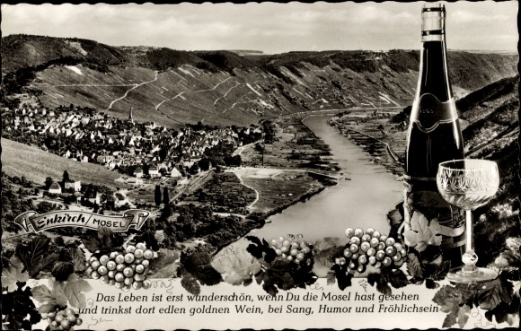 Postcard Enkirch An Der Mosel Panorama Vom Ort Akpoolcouk