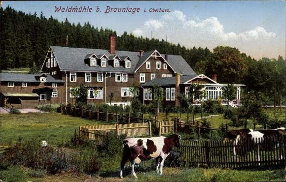 Ansichtskarte Postkarte Braunlage Im Oberharz Akpool De