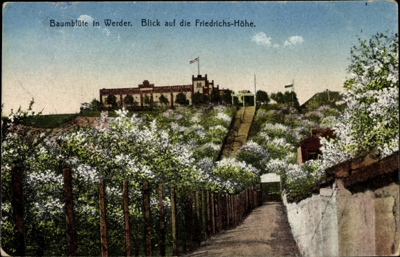 Postcard Werder An Der Havel Baumblute Friedrichshohe Akpool Co Uk