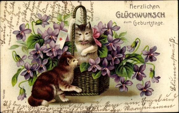 Embossed Postcard Gluckwunsch Geburtstag Katzen Akpool Co Uk