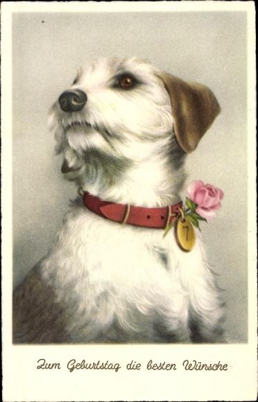 Artist Postcard Gluckwunsch Geburtstag Hund Mit Akpool Co Uk
