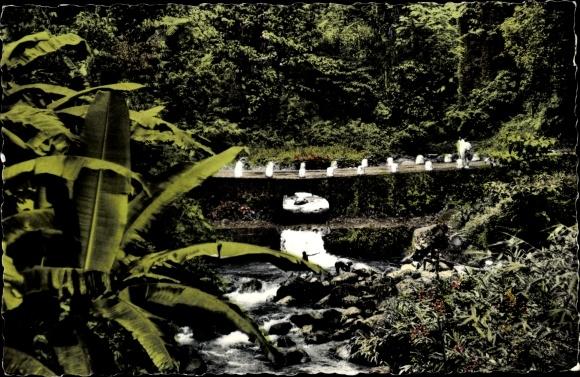 Postcard Martinique Le Pont De L Alma Akpool Co Uk