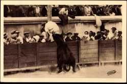 Postcard Nimes CPA 30, Une magnifique poursuite de l'Orphelin