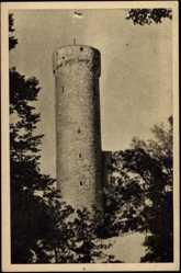 Postcard Tallinn Estland, Hermann Turm, Fahne, Waldblick