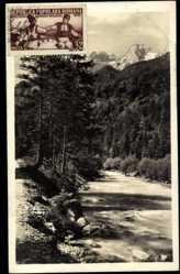 Postcard Slowenien, Blick auf den Fluss mit Bäumen und Bergen