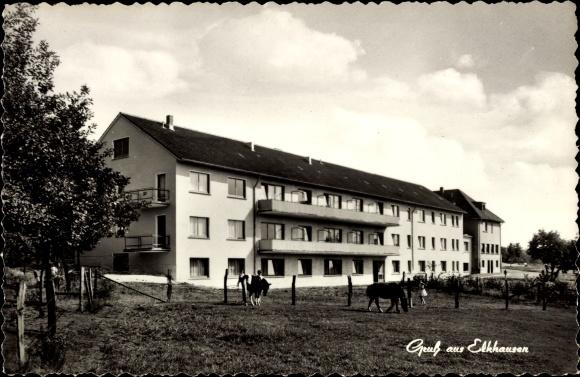 ansichtskarte postkarte elkhausen katzwinkel sieg erholungsheim haus marienberge pferde. Black Bedroom Furniture Sets. Home Design Ideas