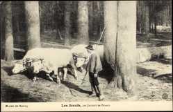 Künstler Ak Jacquot de France, Les Boeufs, Musée de Nancy