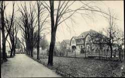 Ak Zielenzig Ostbrandenburg, Promenade mit Villa Neuenfeld