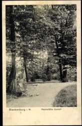 Ak Berlin Pankow Blankenburg, Park der Heimstätte Upstall