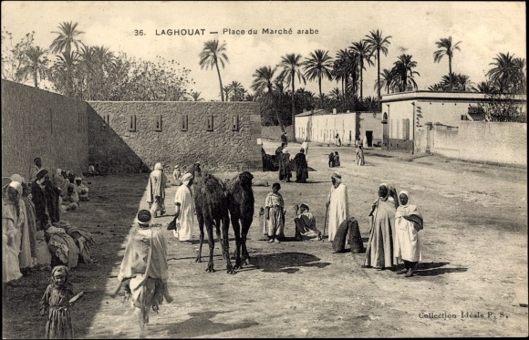 Laghouat Algerien, Place du Marché arabe, Marktplatz, Kamele