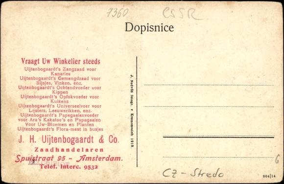 Kosmonosy Kosmanos Mittelböhmen, Teilansicht vom Ort
