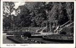 Postcard Neuss in Nordrhein Westfalen, Partie im Rosengarten, Treppe, Blumenbeete