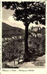 Ansichtskarte / Postkarte Nossen Landkreis Meißen, Blick zum Schloß, Parkbank, Baum