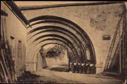 Ansichtskarte / Postkarte Altzella Nossen, Kloster Altzella, Blick auf Romanisches Klostertor
