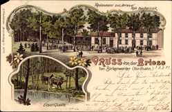 Litho Briese Birkenwerder, Restaurant, Elsenquelle