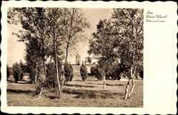 Ak Soldin Ostbrandenburg, Blick in den Horst Wessel Ehrenhain, Turm