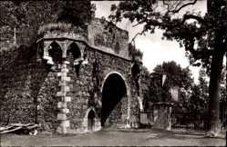 Postcard Zons Darmagen, Blick auf die Schlossruine, Seitenansicht