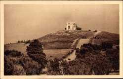 Postcard Sfax Tunesien, Foret d'Oliviers et Touil Ech Cheridi, Olivenbäume