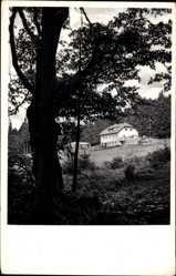 Postcard Waldthurm, Blick auf Pension Schutzhaus Fahrenberg, Wald
