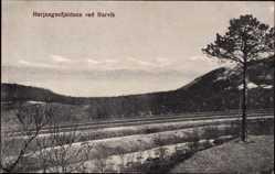 Postcard Narvik Norwegen, Herjangenfjeldene, Feld, Berghang, Baum, Wolken