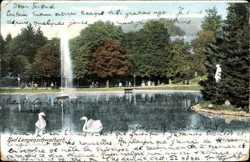 Bad Langenschwalbach, Schwäne, Kurpark, Fontäne