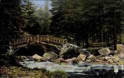 Brücke zur Okerinsel