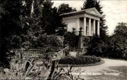 Flora Tempel